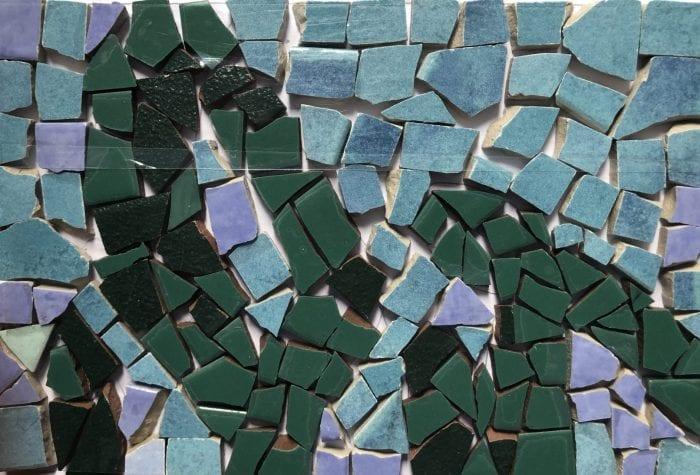 NHAMS seaweed mosaic, pregrout